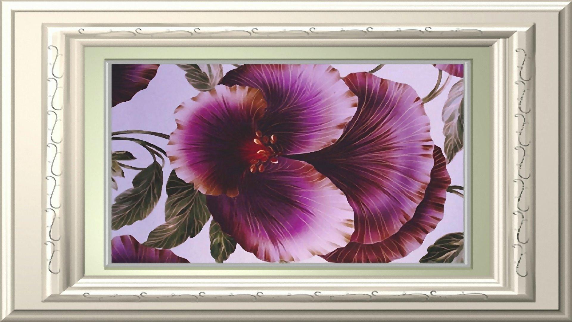 Blumen Hintergrundbilder Mit Rahmen