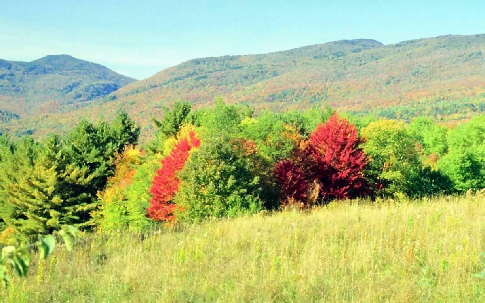 Kostenlose Bilder Herbst : fotos herbst kostenlos ~ Eleganceandgraceweddings.com Haus und Dekorationen