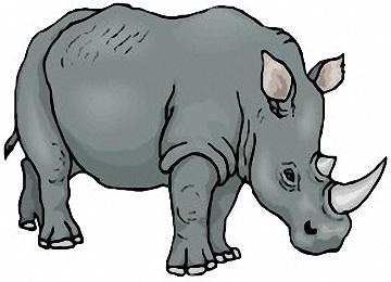 Nashorn Ausmalbilder